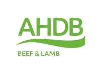 AHDB Beef and Lamb logo_cmyk exclusion