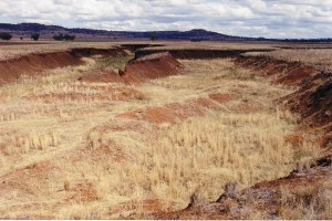 gully-march-03-6-300x200